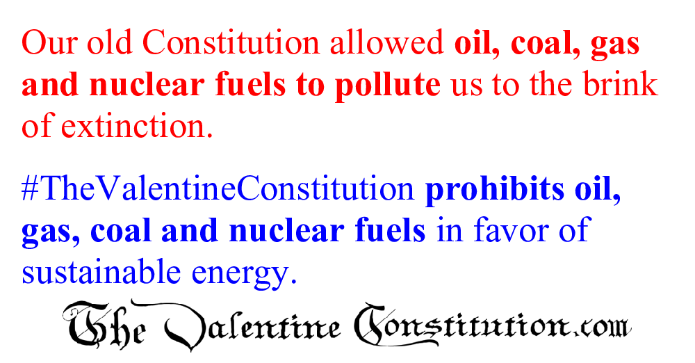 CONSTITUTIONS > COMPARE BOTH CONSTITUTIONS > Energy
