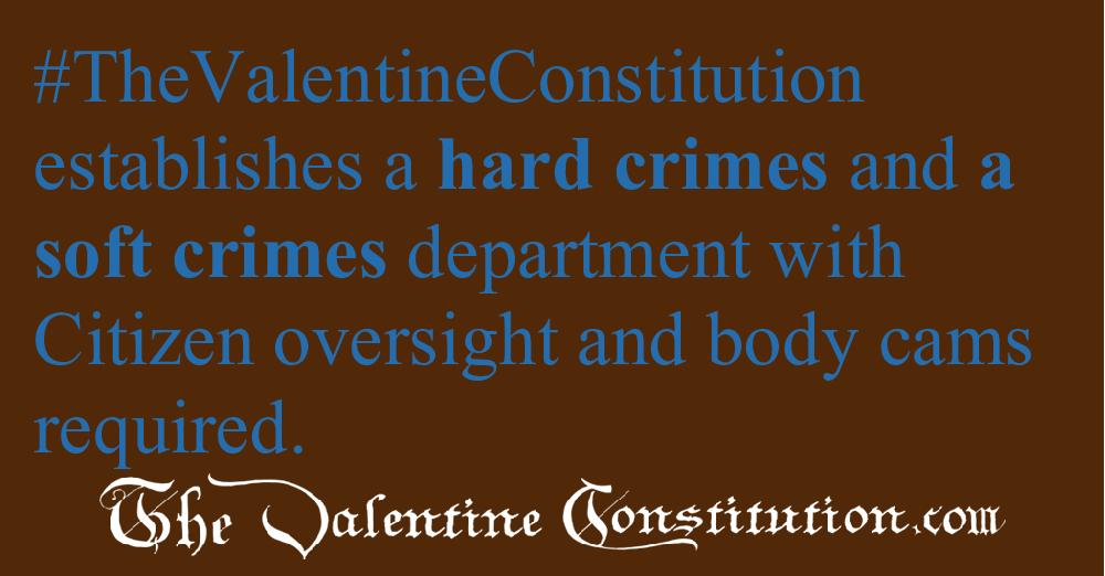 JUDICIARY BRANCH > POLICING > Hard and Soft Crime Agencies