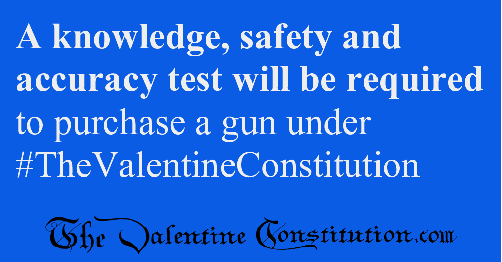 RIGHTS > GUNS > Safety and Accuracy Tests